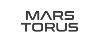 Mars Torus